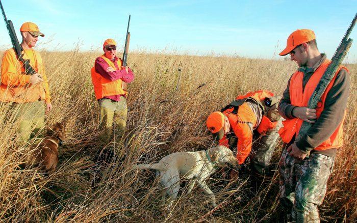 Avcılık Sporu