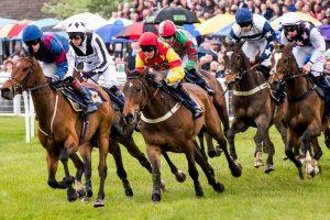At Yarışı Bahisleri Nasıl Yapılır